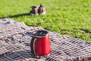 Coffee in nature