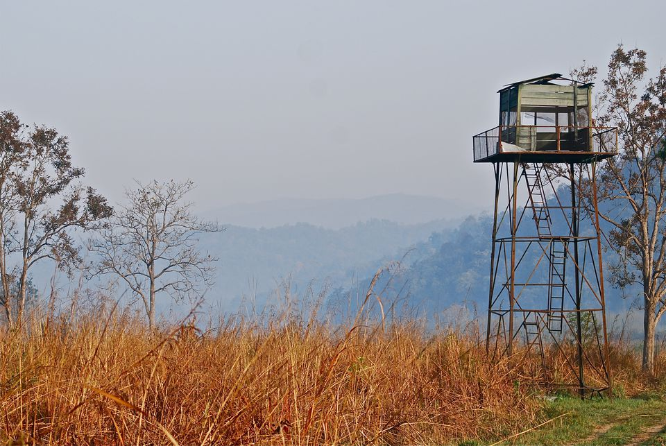 Watchtower at Jim Corbett National Park