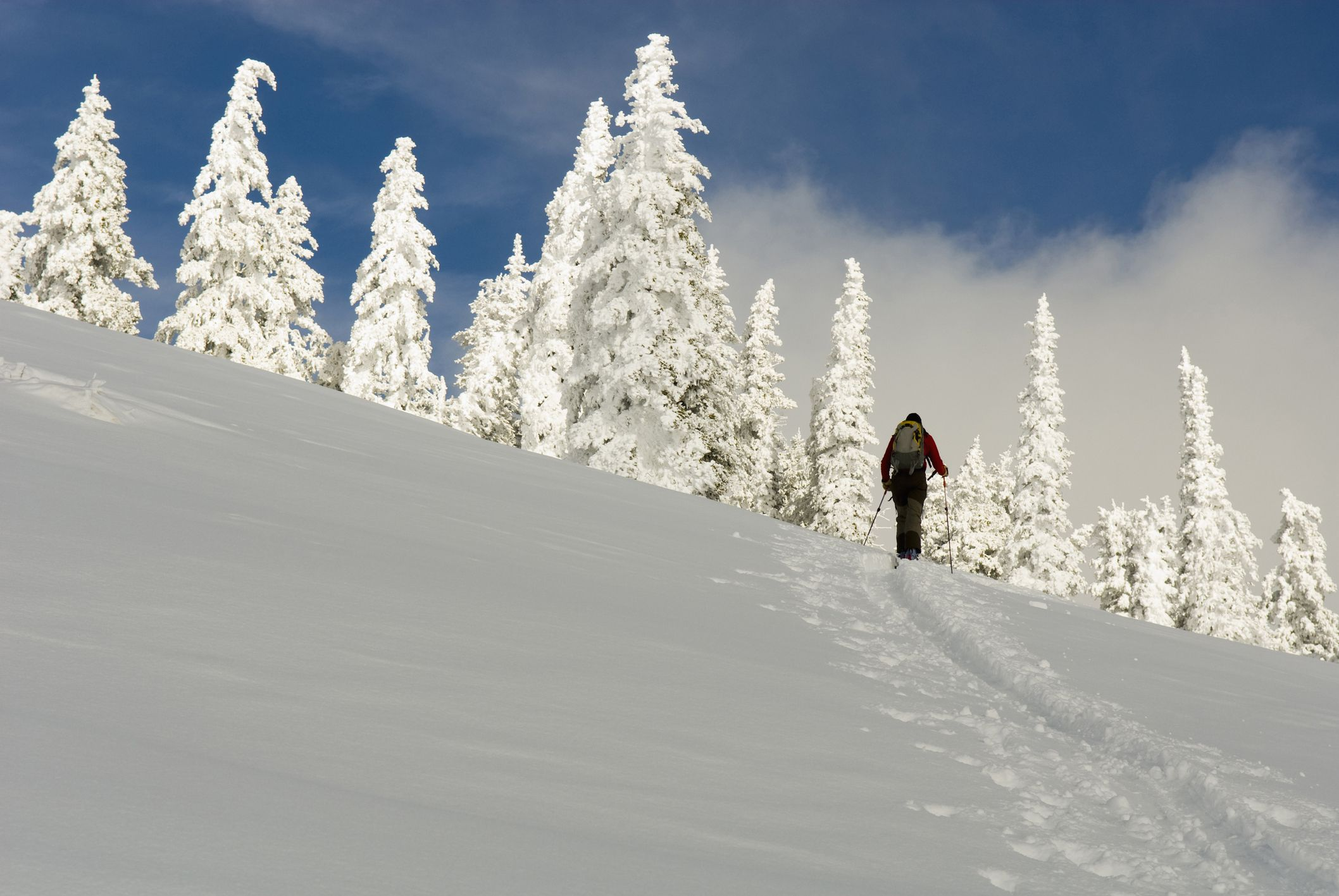 Cross Country Ski Sale Akers Ski Com >> The Best Places To Go Cross Country Skiing In Colorado