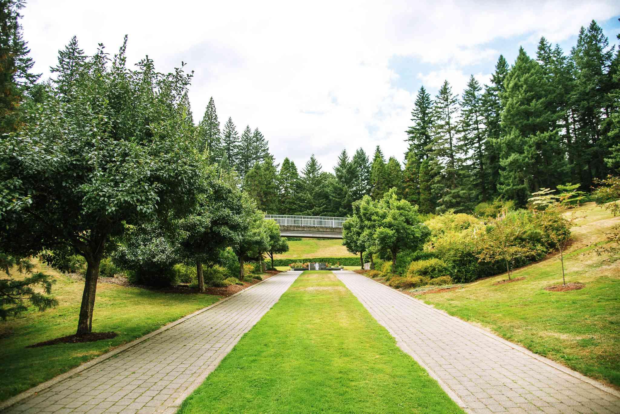Dos caminos paralelos en el Arboreto de Hoyt con árboles a ambos lados y árboles en el fondo