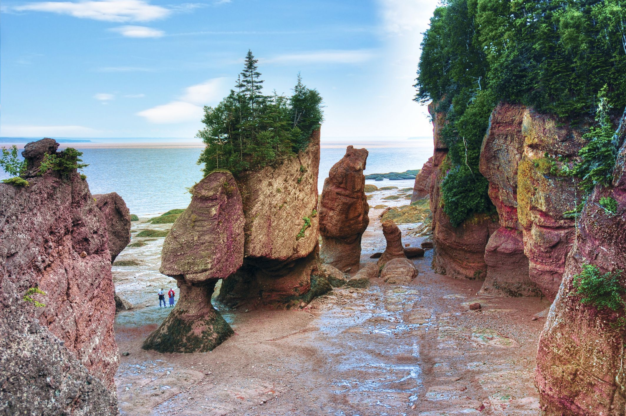 Two people visiting the Hopewell Rocks rock formations