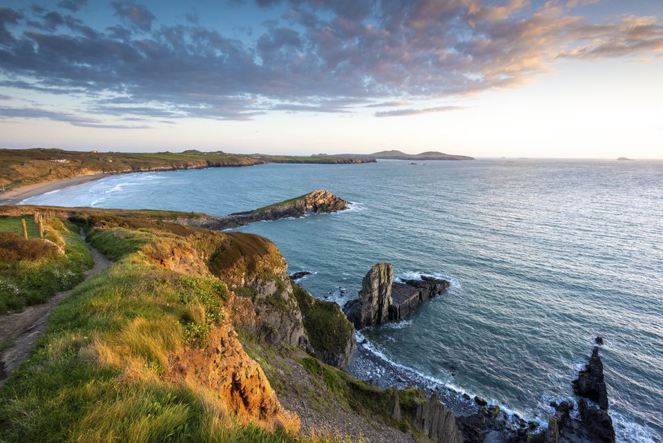 The cliffs above Whitesands beach on the Pembrokeshire coast path near St Davids at sunset