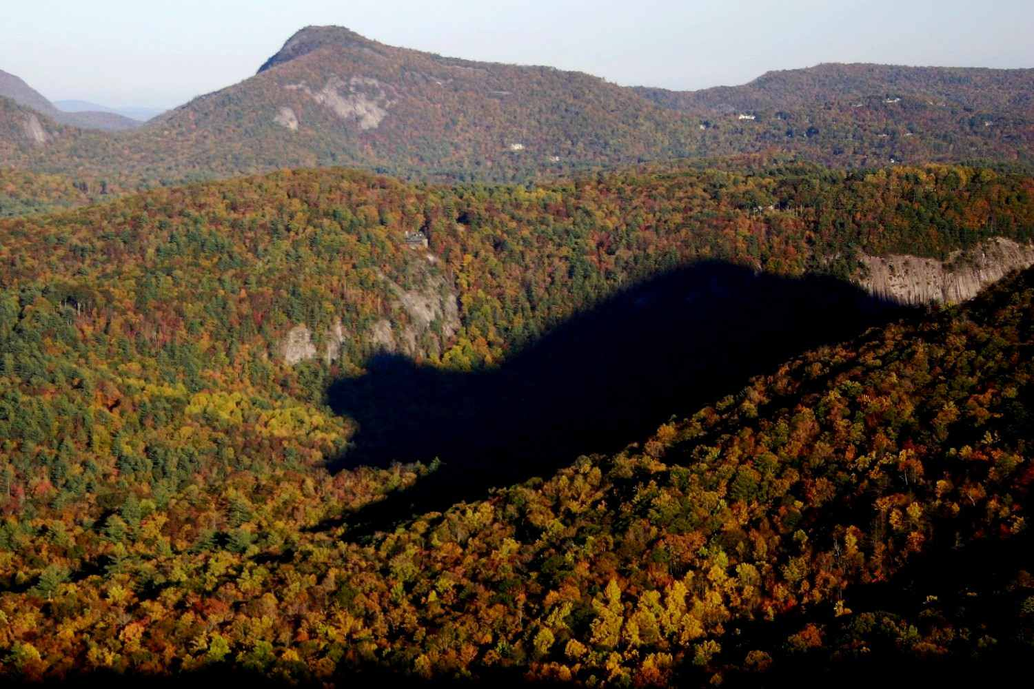 The Shadow of the Bear in the North Carolina Mountains