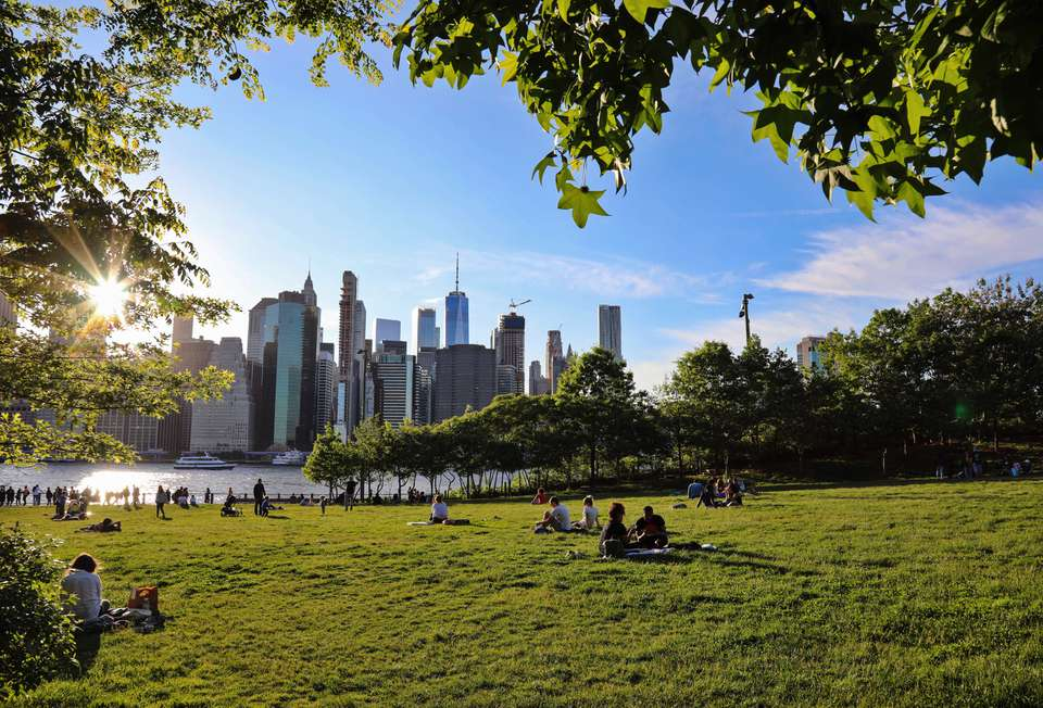 People on the lawn in the Brooklyn Bridge Park with a view of the water and skyline in the background