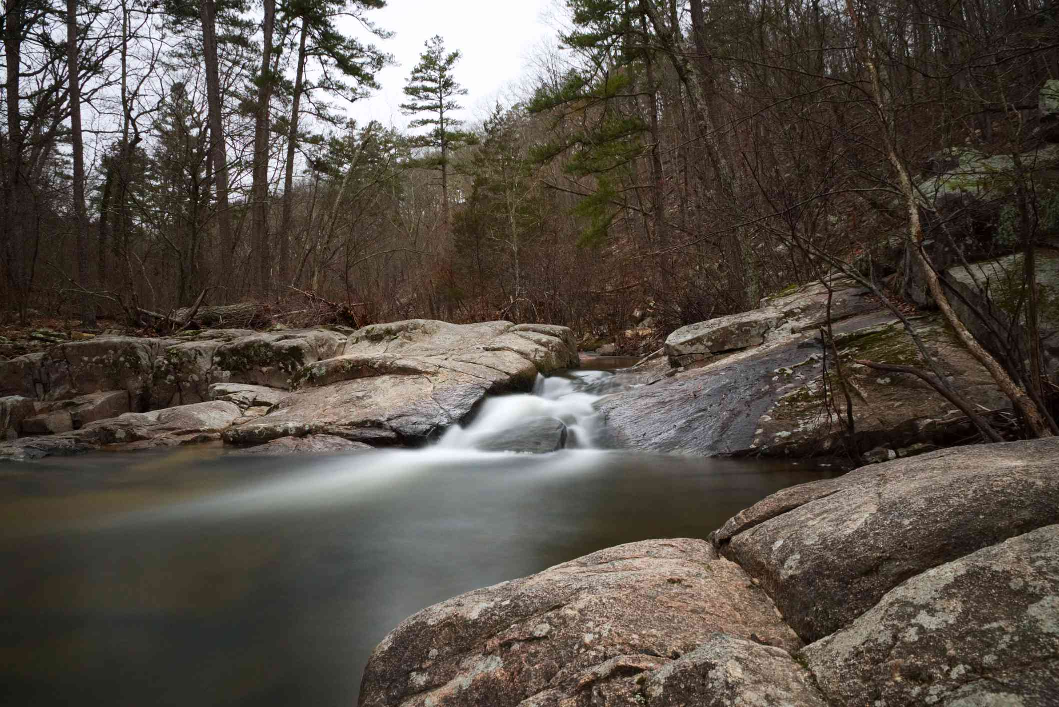 Flowing Stream in the Ozarks