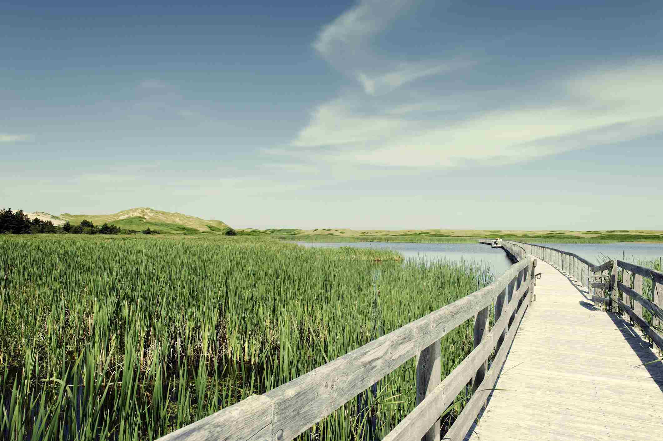 Boardwalk over Bowley Pond, Prince Edward Island National Park, Canada