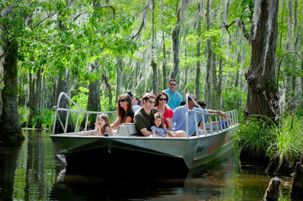 Swamp Tour New Orleans >> The 8 Best New Orleans Swamp Tours Of 2019