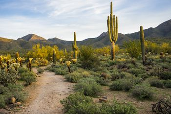 Introduction to phoenix area master planned communities Public swimming pools in avondale az