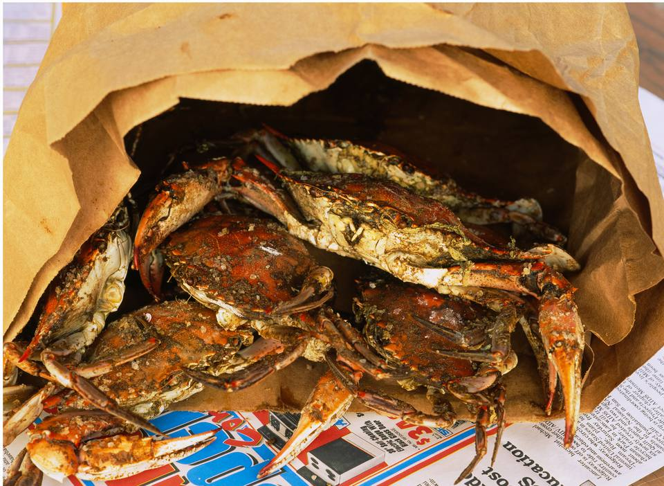 Close Up Of Steamed Crabs In A Paper Bag Maryland Usa