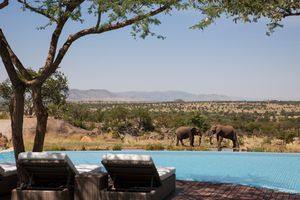 View of an infinity pool with elephants in the background, Four Seasons Serengeti