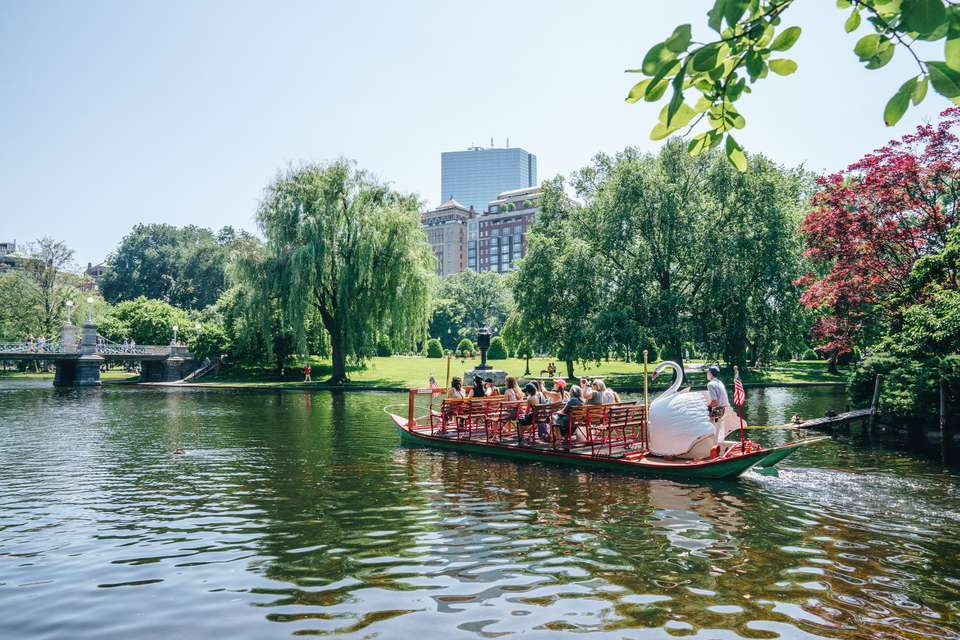 Duck boat in boston public garden