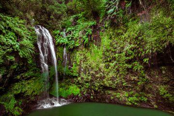 Cascade Sacrée in Amber Mountain National Park, Madagascar
