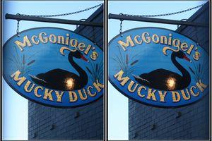 McGonigel's Mucky Duck, Houston, Texas