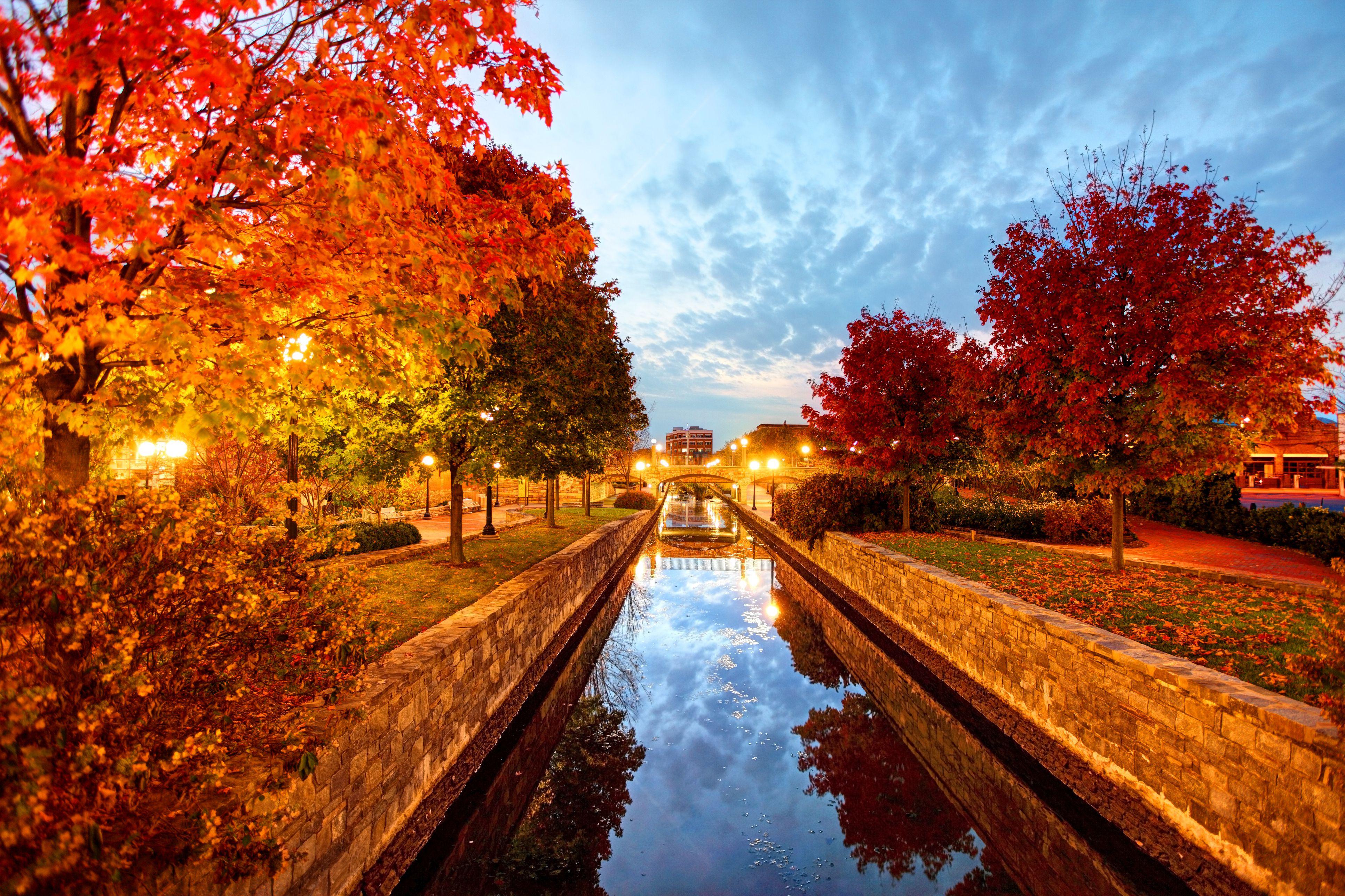 Fall foliage in Frederick, Maryland
