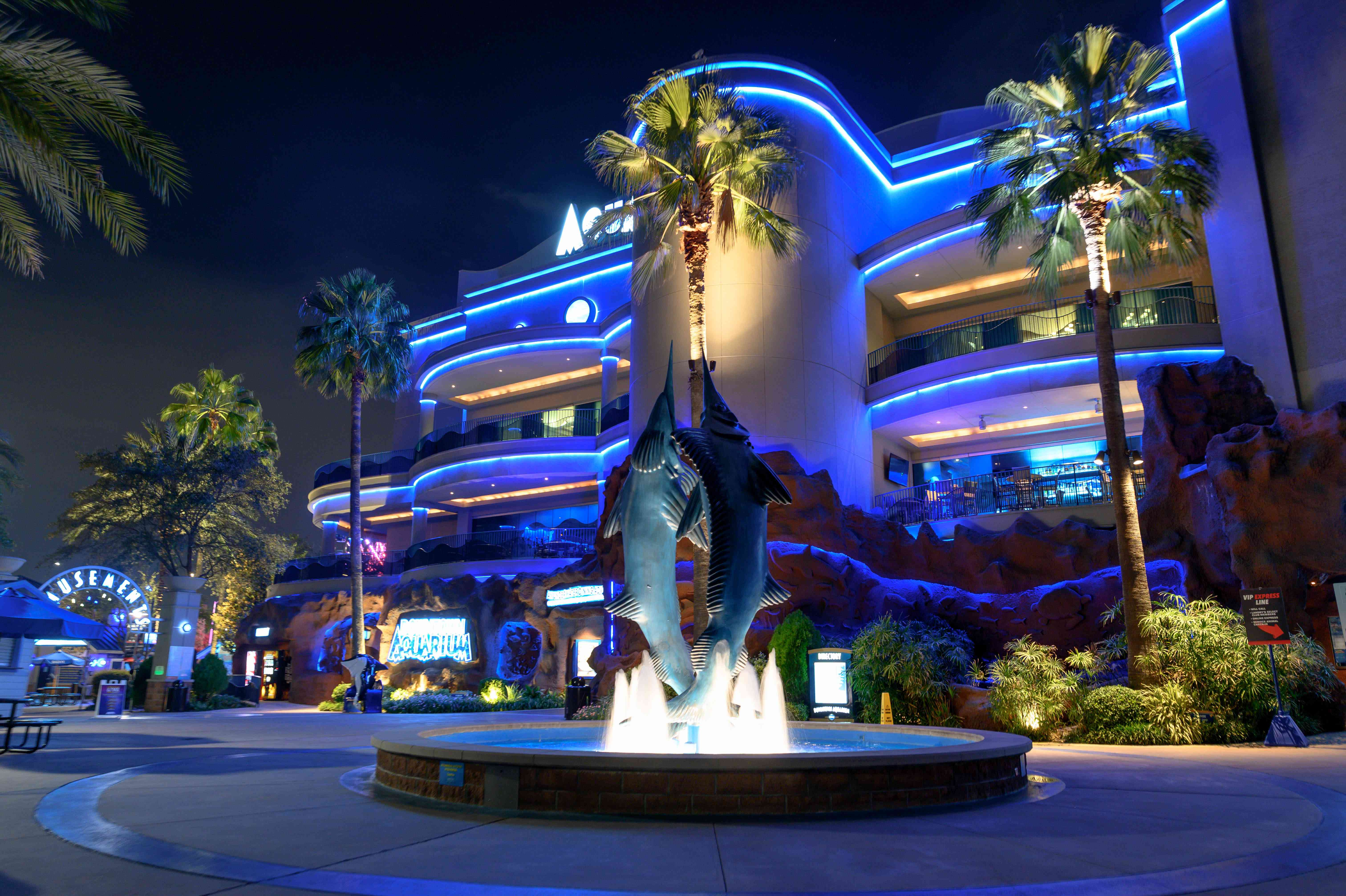 The exterior of the Houston Aquarium lit up at night with a swordfish fountain in the front