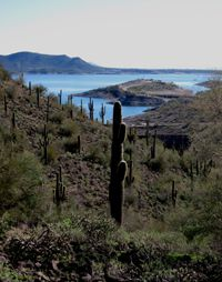 Lake Pleasant, Arizona