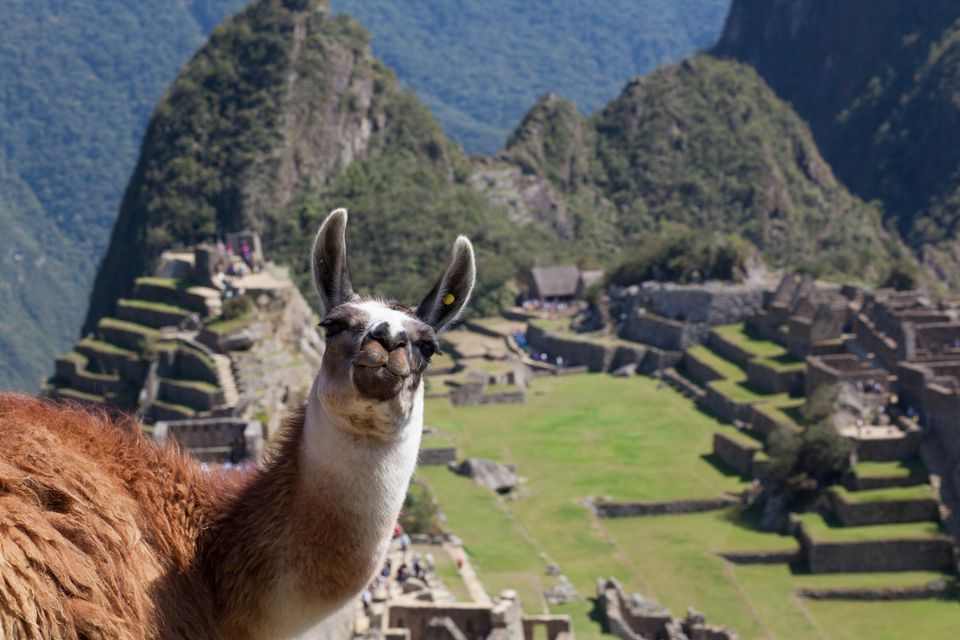 The Best Inca Trail Tour Operators In Peru