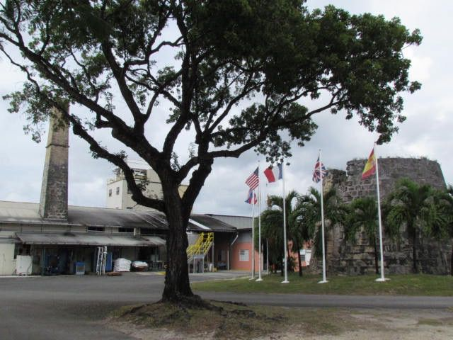 Cruzan Rum Factory Tour in St. Croix, U.S. Virgin Islands