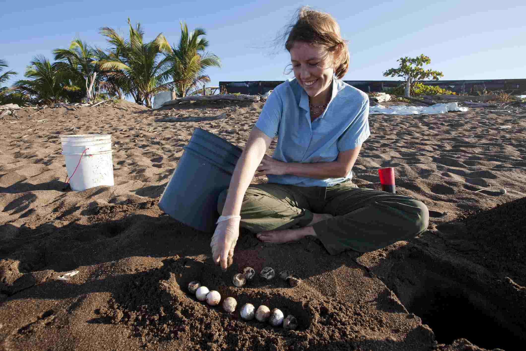 A volunteer works with sea turtle eggs on a beach