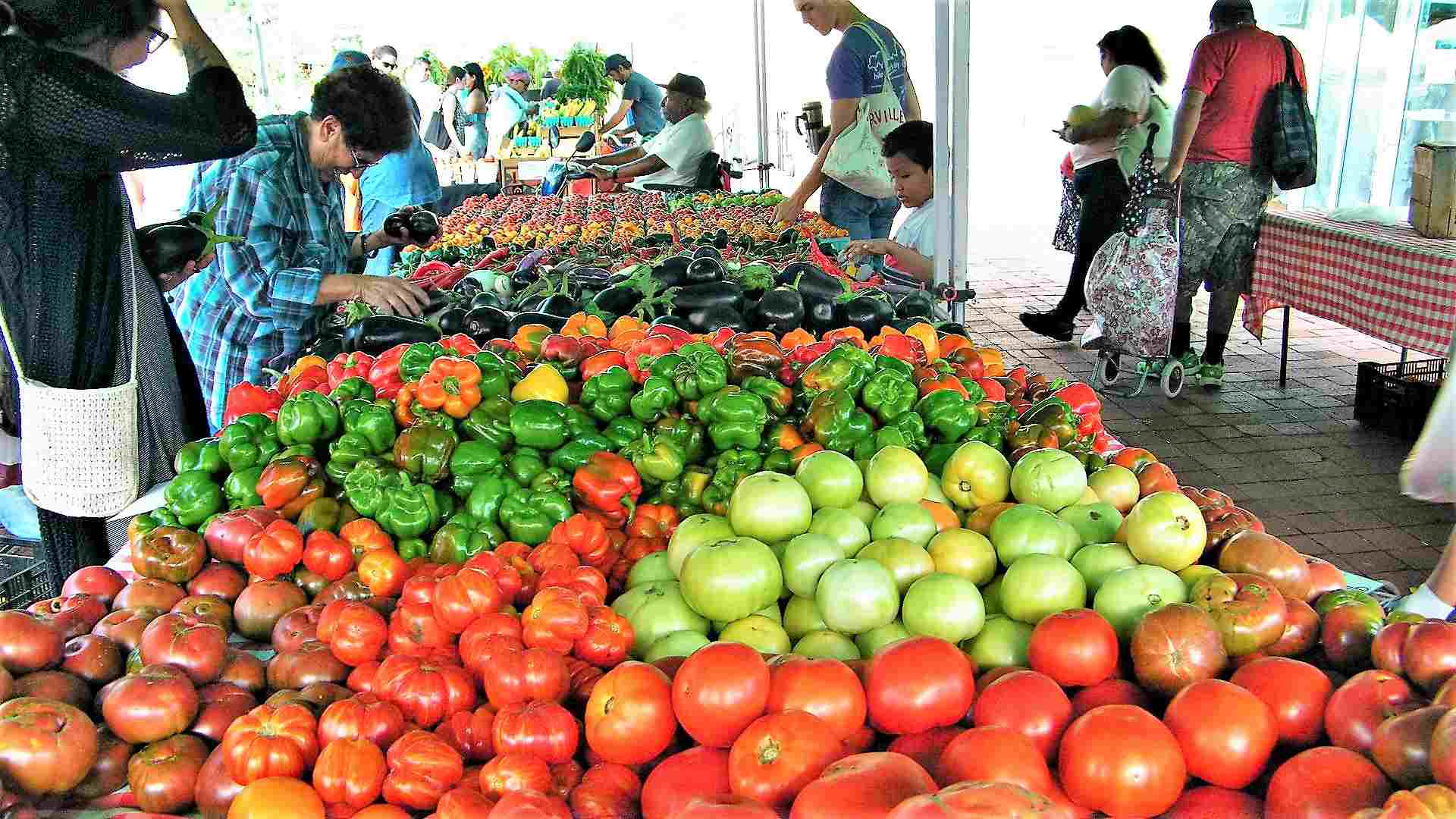 Guide to Farmers Markets in Washington, D C
