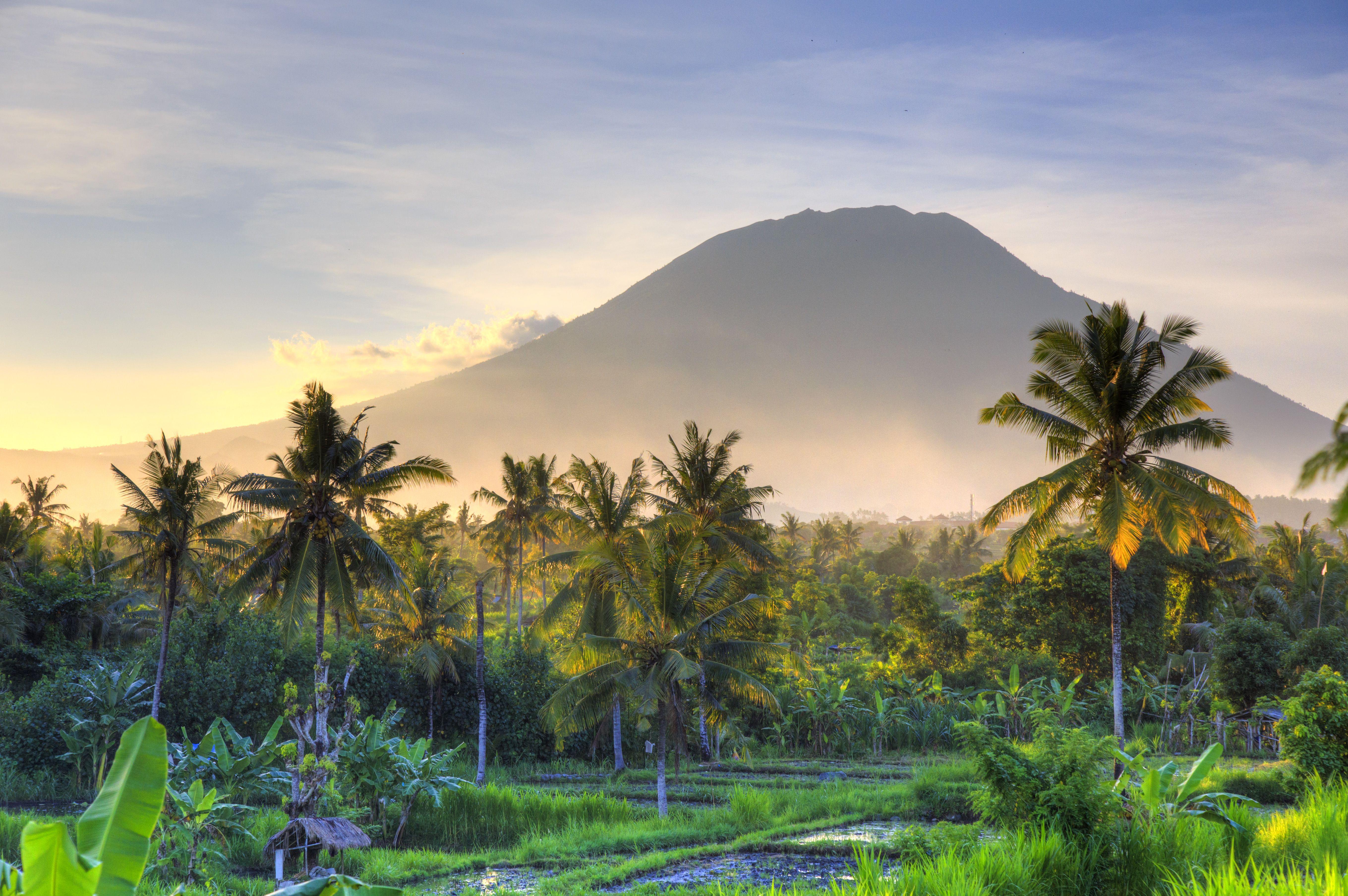 Indonesia, Bali, campos de arroz y volcanes