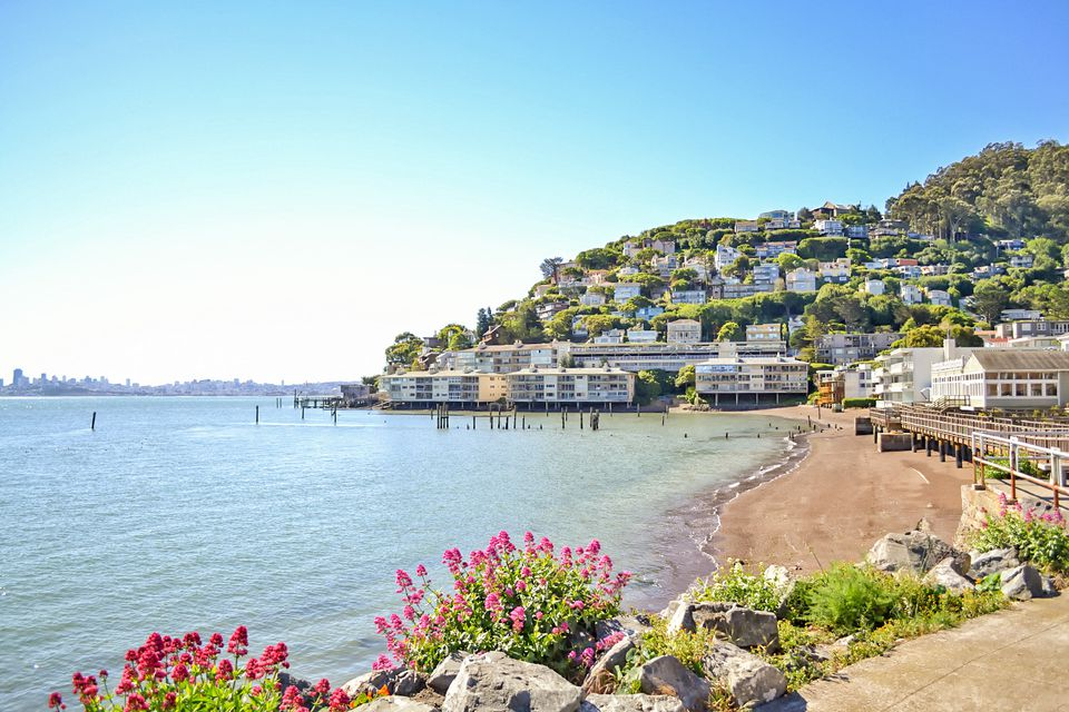 Sausalito Waterfront View