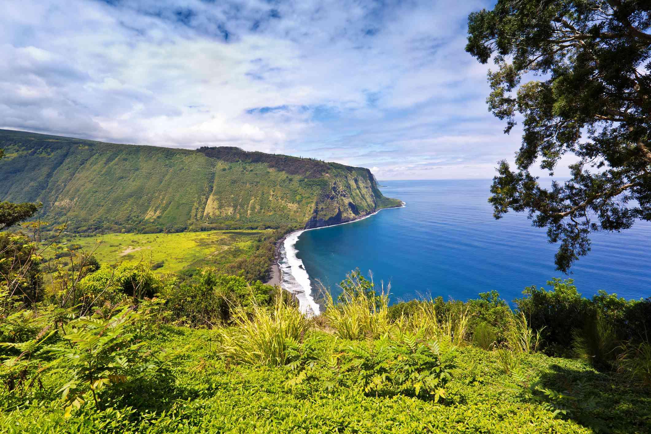 Waipio Valley along the Hamakua Coast, Hawaii