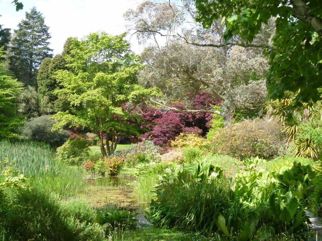 The colors of the Mount Usher Gardens