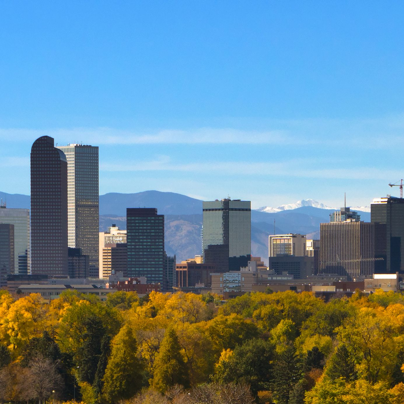 Your Trip to Denver: The Complete Guide
