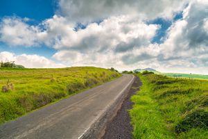 Kohala Mountain Road, Big Island