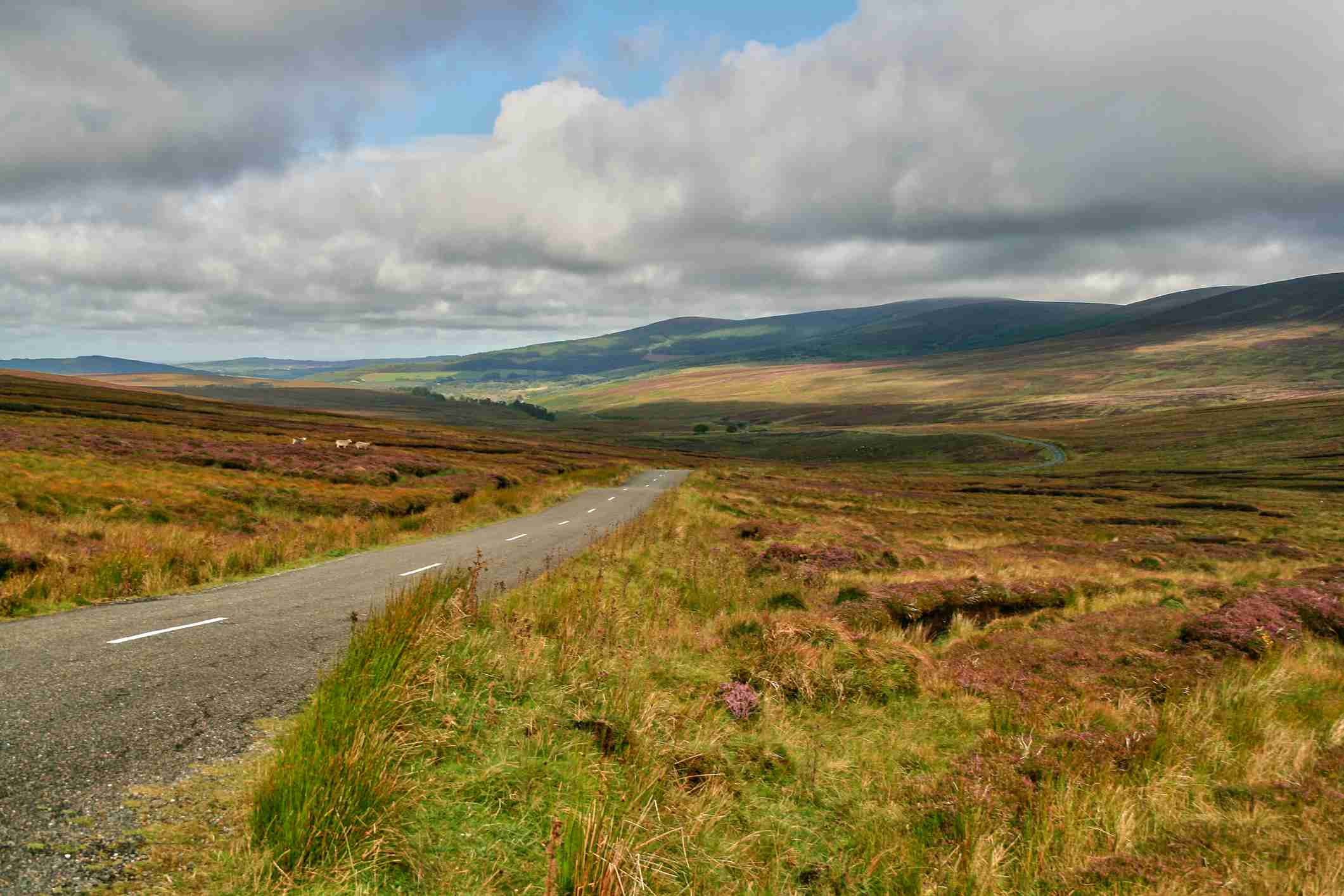 Wicklow Mountain Landscape View down a road