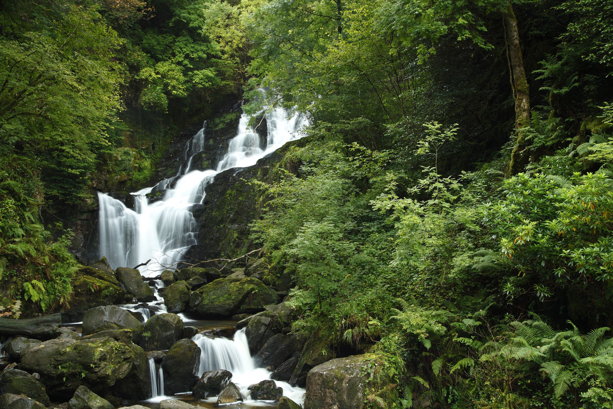 Torc Waterfall and lush greenery off the Ring of Kerry