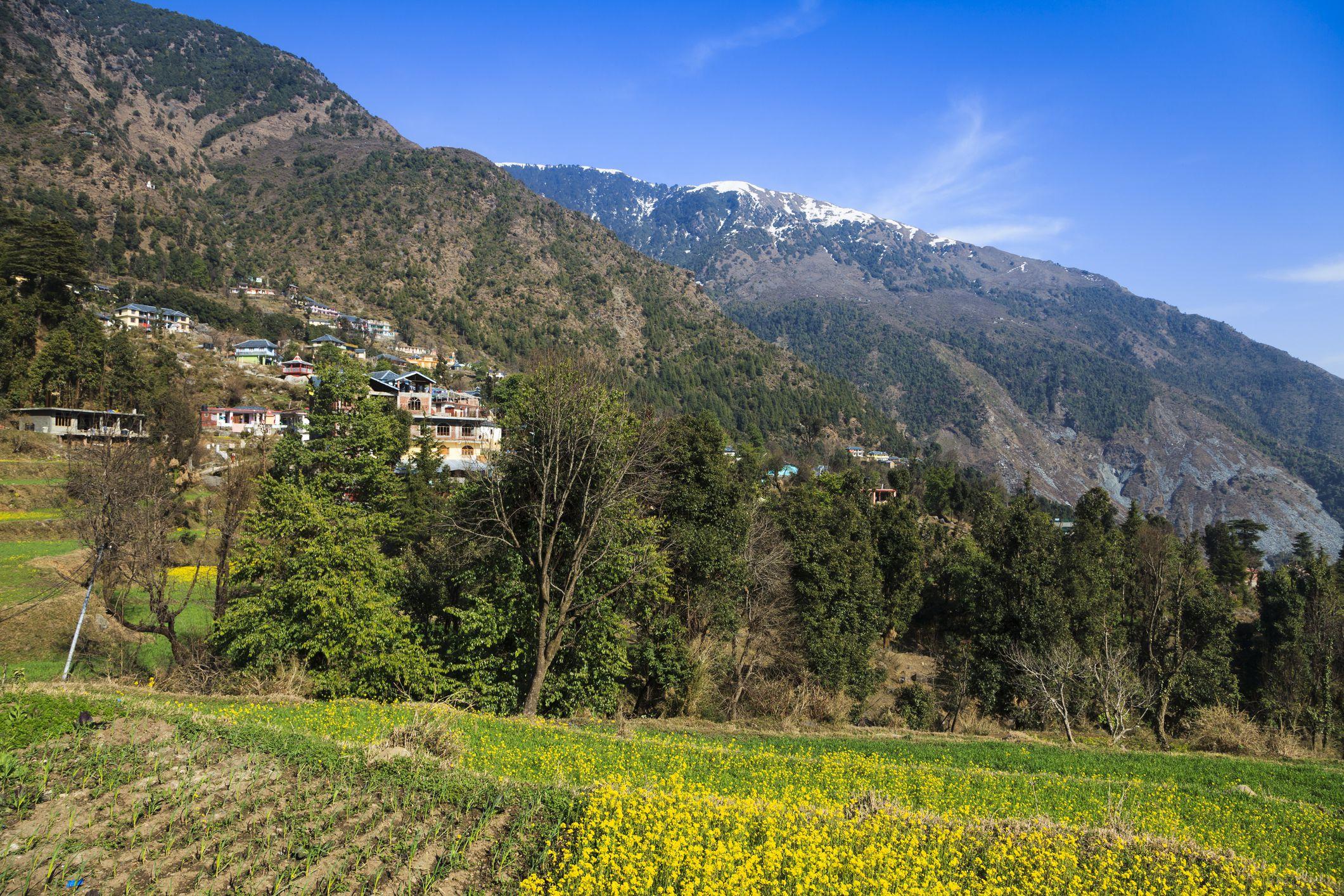 Dharamkot, Himachal Pradesh.