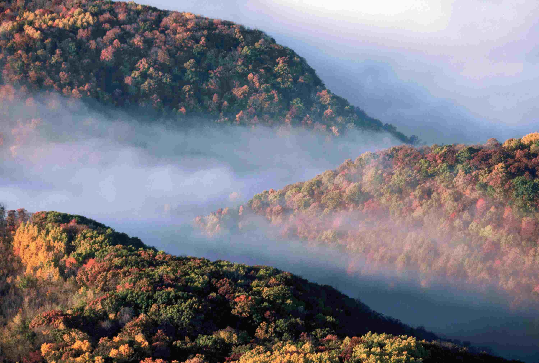 Fog in Mississippi River Valley