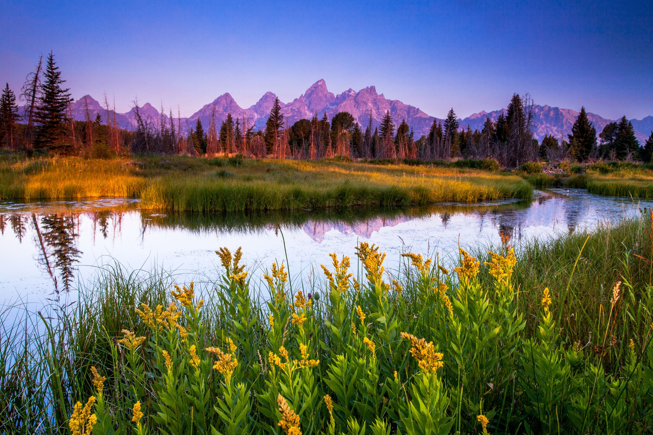 The Best National Parks in America