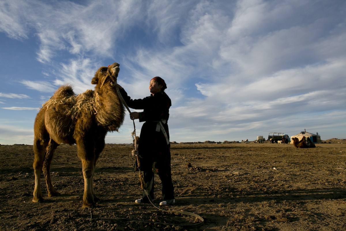 Gobi Desert camel trek