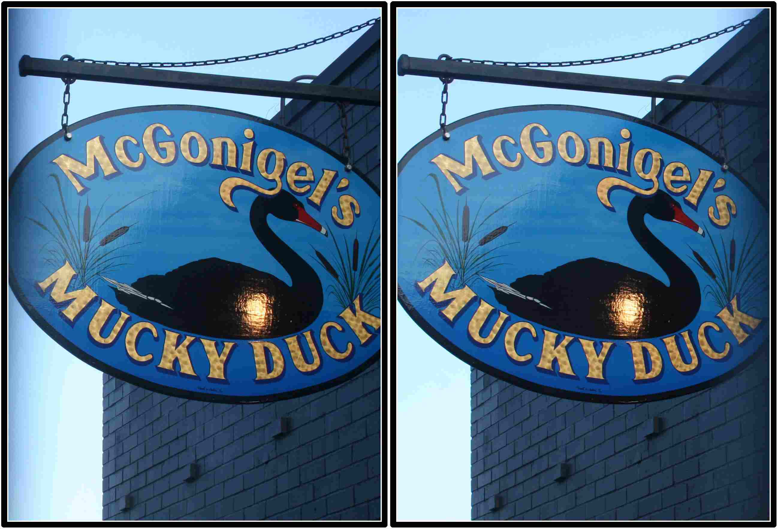 McGonigel's Mucky Duck, Houston, Texas