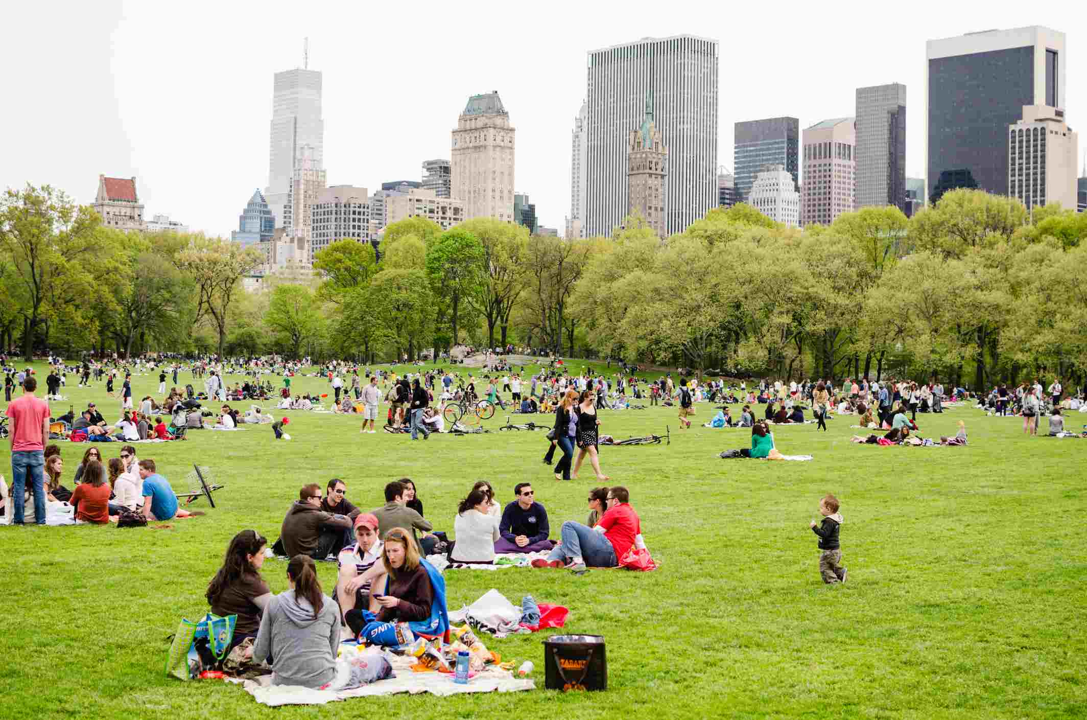 People enjoying picnic in Central Park, New York City
