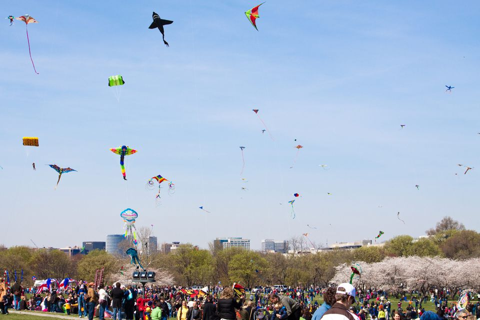 Smithsonian Kite Festival