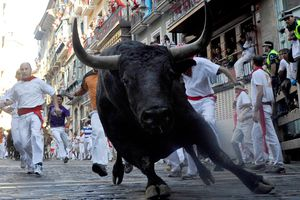 A fighting bull goes around Estafeta corner on the sixth day of the San Fermin running-of-the-bulls on July 11, 2011 in Pamplona, Spain.