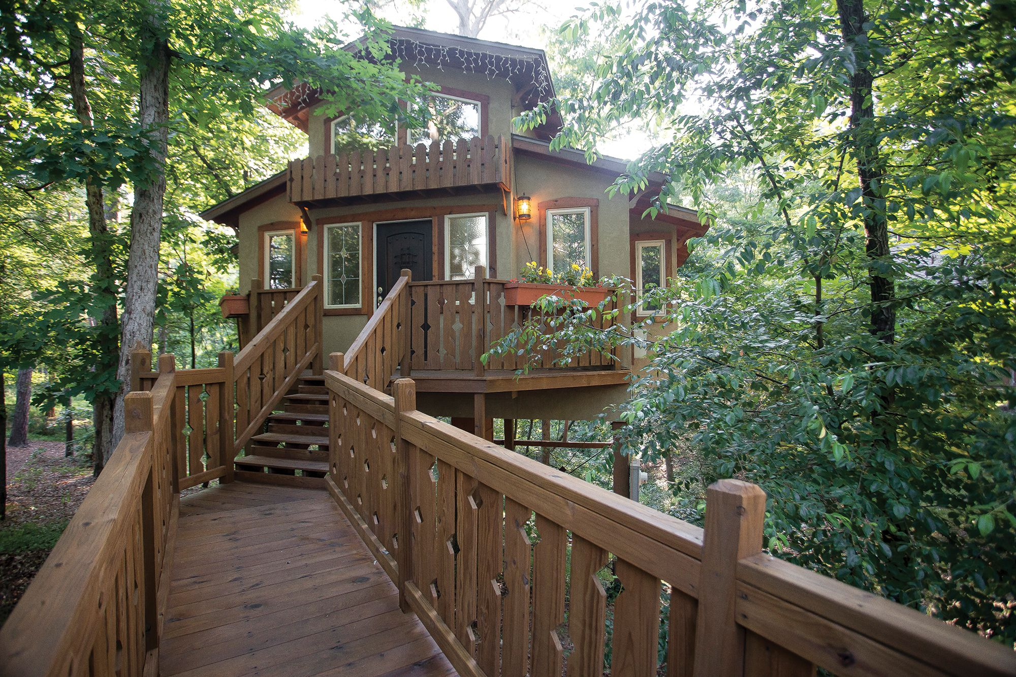 Grand Treehouse Resort