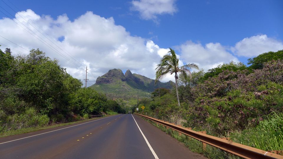 Road on Hawaii Island