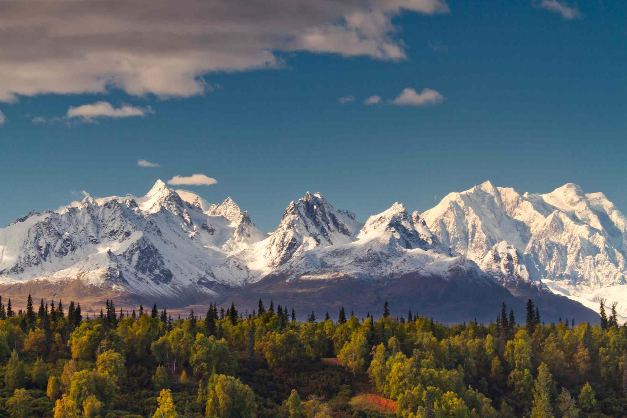 vista clara del monte McKinley en la temporada de otoño