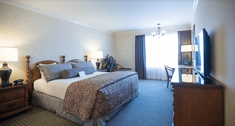 The 9 best budget san francisco hotels of 2018 for Cow hollow motor inn and suites