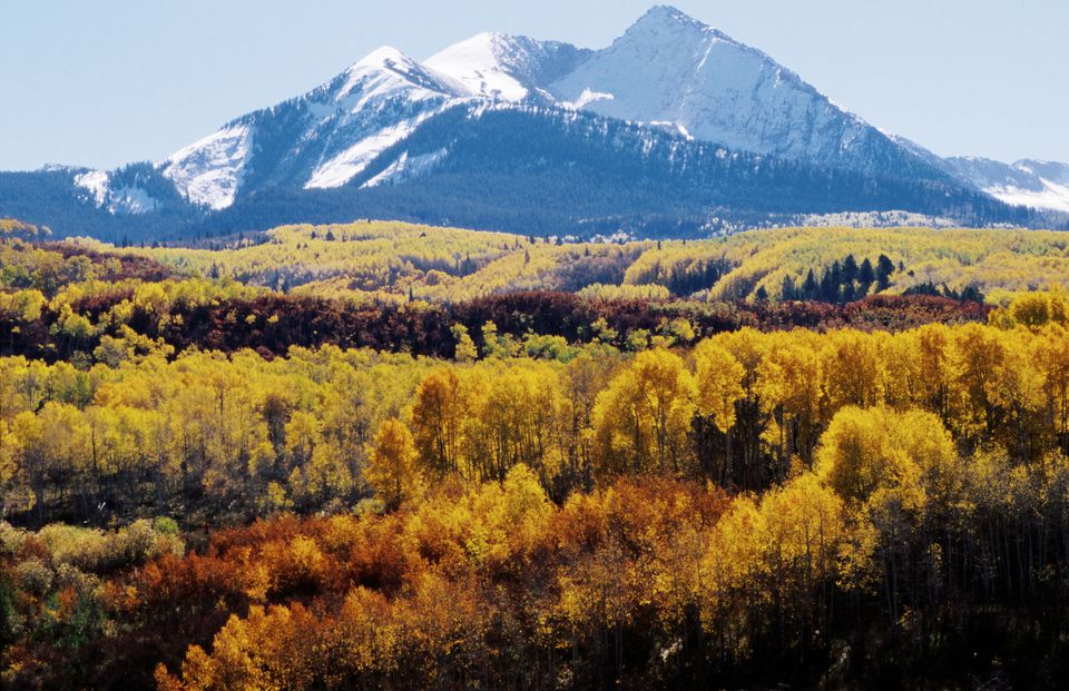Autumn foliage and Chair Mountain, West Elk Loop Scenic Byway