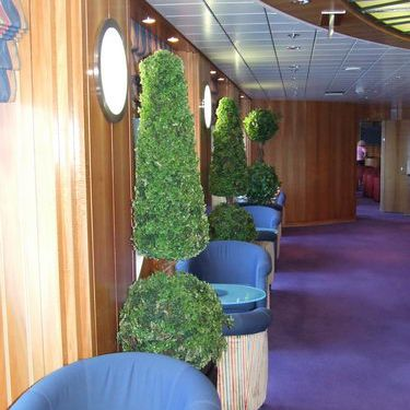 Celebrity Infinity - Deck 3 Hallway