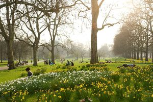 People relaxing in St James Park