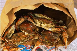 Steamed crabs in a paper bag, Maryland