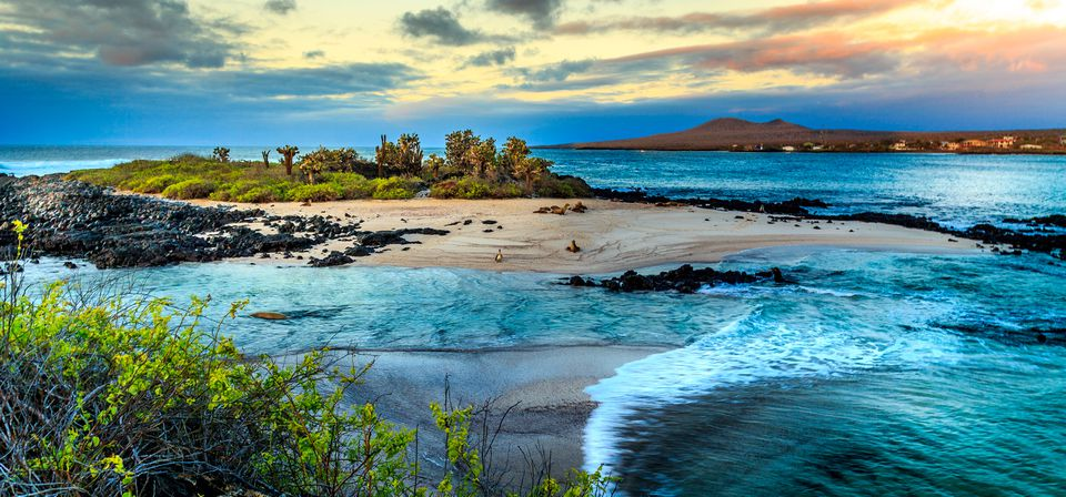 Sea view of one of the islands of the Galapagos