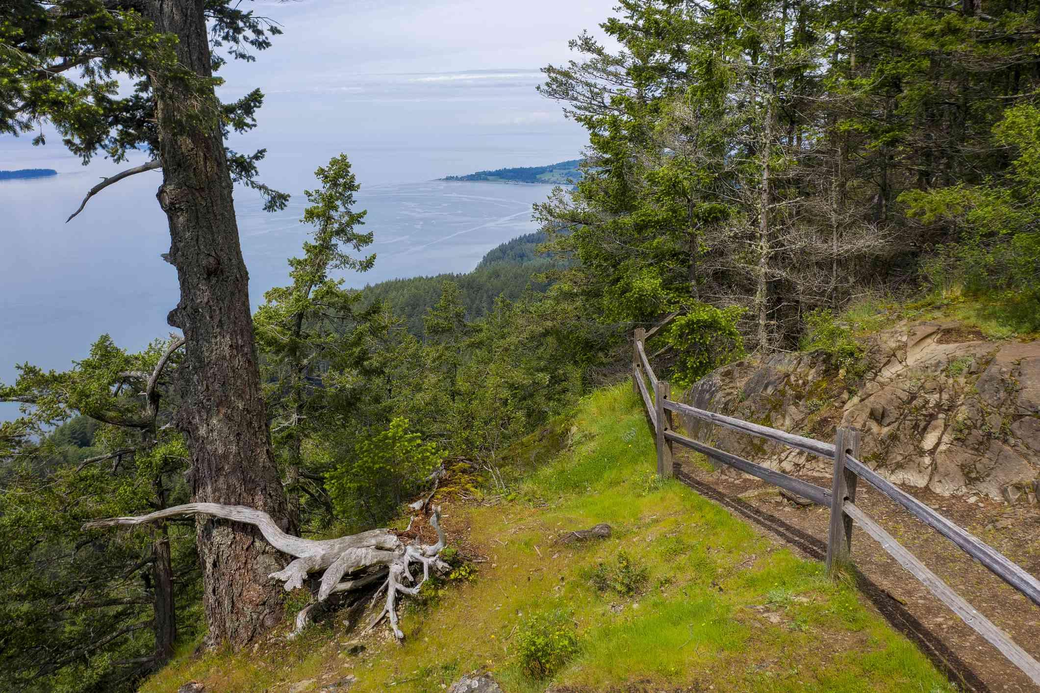 Overlook at the Baker Preserve on Lummi Island, Washington.